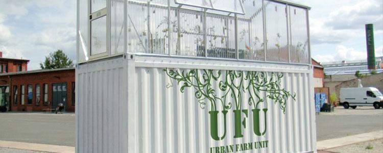 Invernaderos De Productos Orgánicos En Containers